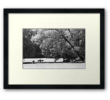 Munich Park Framed Print