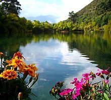 Beautiful Black Dragon Pool in Lijiang, China by Qing Yang