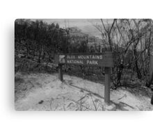 Burnt Land Canvas Print