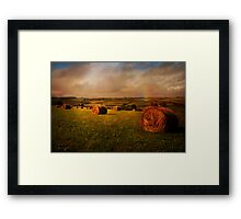 Cornish Fields Framed Print