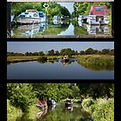 Summer Boating on the Wey by Rachael Talibart