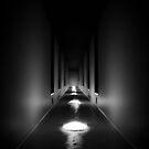 Endless Fear by Ryan O'Donoghue