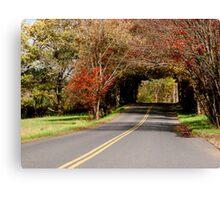 Autumn Landscape III Canvas Print