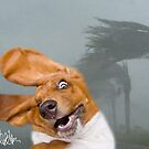 Knuckles vs. Hurricane Irene by eelsblueEllen