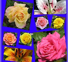 Roses and Lilies Collage by BlueMoonRose