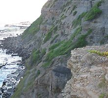 Bogey hole cliffs, Newcastle, NSW. Australia.3 by D4RKH0R53