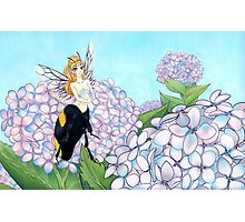 Bubble Bee Queen Photographic Print