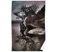 Firkin Point, Loch Lomond Poster