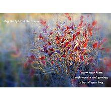 Spirit of the Season... Photographic Print