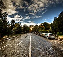 Onto the white line by Davide Ferrari