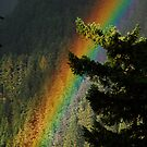 Rainbow in the Valley by Amy Hale