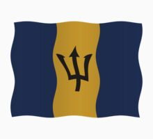 Barbados flag by stuwdamdorp