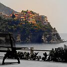 The village Manarola, view from the Corniglia Railway Station by Neha Singh