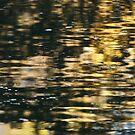 Reflect by brilightning