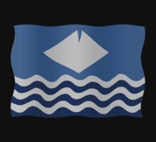 Isle of Wight flag by stuwdamdorp