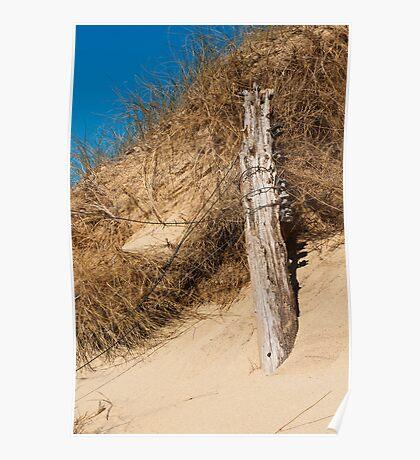 Landscape, Fence Posts, Desiccated, Sand dunes, Poster