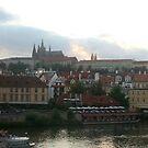Prague castle by Ilan Cohen