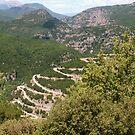 The winding road to Papigo, Zagoria Greece by Ilan Cohen