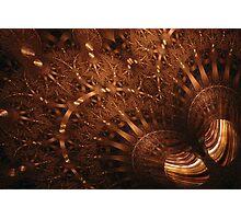 Spherical - Tiger-Eye Gem Photographic Print