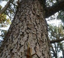 Tree 1 Sticker