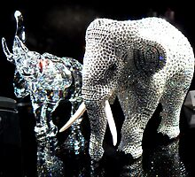Swarovski Elephants by Graeme  Hyde