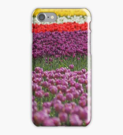 Colorful Tulip iPhone Case iPhone Case/Skin