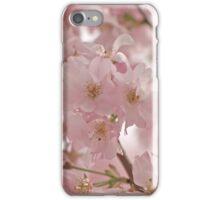 Cherry Blossom iPhone Case iPhone Case/Skin