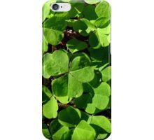 Clover iPhone Case iPhone Case/Skin