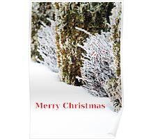 christmas chills Poster