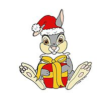 Thumper Christmas 2011 Photographic Print