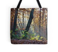 Views: 872 ★★★★★ . Have You Ever Seen the Paradise ?  God Bless Love of Life & Autumn Amen ! Dedicated to Love & Phil Collins - Another Day in Paradise. Пусть Бог не последний, СПАСИБО ! Tote Bag