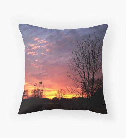 Crimson Explosion Throw Pillow