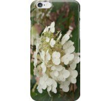 Hydrangea I-Phone Cover iPhone Case/Skin