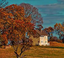 USA. Pennsylvania. Kennett Square. Colors of Fall. by vadim19