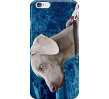 Weimaraner I-phone Cover iPhone Case/Skin