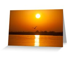 As The Seagull Heads Home Greeting Card