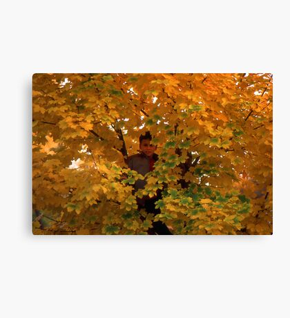 Boy in Tree Canvas Print