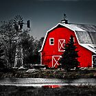 Vibrant Red Barn  by Marcia Rubin