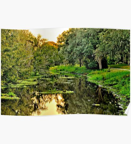 Sawgrass in HDR #2 Poster