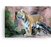 Me and My Mom Canvas Print