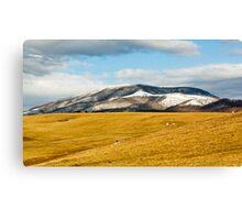 Beartown Mountain in Winter Canvas Print