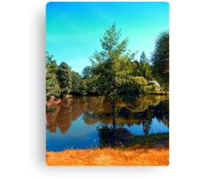 The lonely tree at the pond Canvas Print