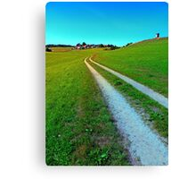 Lonely trail along the border Canvas Print