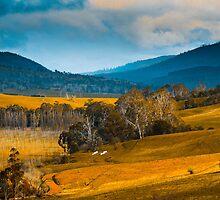 Rural Tasmania by Jill Fisher