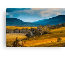 Rural Tasmania Canvas Print