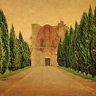 Cypress Lane-San Galgano, Tuscany by Deborah Downes