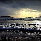 Worms Head from Rhossili Beach by Matt Ware