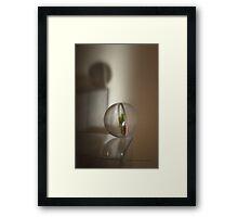 Balance © Vicki Ferrari Photography Framed Print