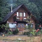 Grandma`s house in the Woods by lenslife