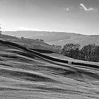 Sleddale 01 - Yorkshire Dales, UK by ExclusivelyMono
